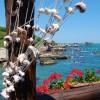 Parco costa teatina: presentata una interrogazione parlamentare