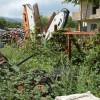 Pretoro: la Forestale sequestra cimitero delle macchine