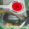 Carunchio: denunciato dalla Forestale un cercatore di tartufo
