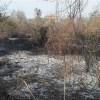 Rapino: individuato il responsabile dell'incendio boschivo