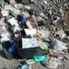 Giulianova: lotta agli sporcaccioni, tolleranza zero