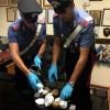 San Salvo: arrestato albanese trovato con 1,4 kg di cocaina in casa