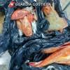 Pesca illegale: a Pescara sequestrati 36kg di pesce di varie specie