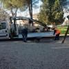 Montesilvano: due migranti al lavoro gratuitamente per la collettività