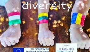 Il mondo Erasmus non si ferma, si continua sul web