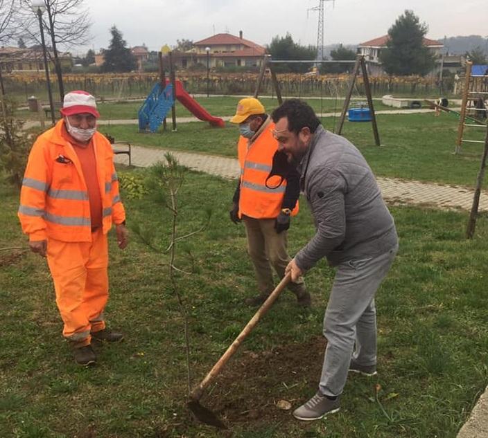 Tollo: tante iniziative per la festa dell'albero